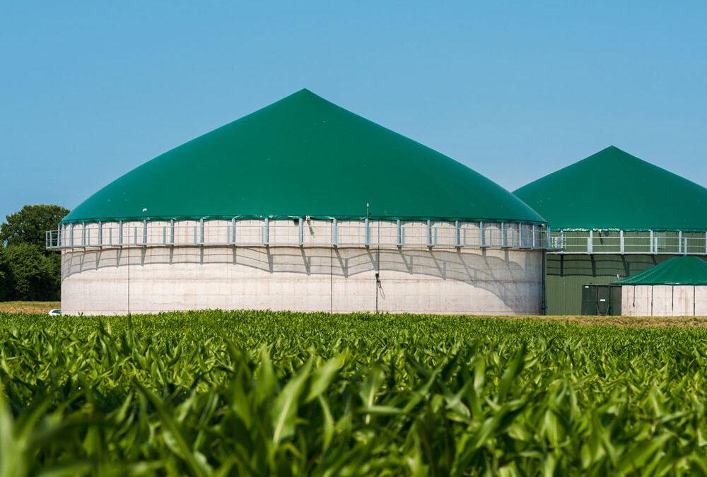 Impianto Biogas Pignataro Interamna (FR)